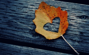 stories-of-love-for-autumn-1280x800